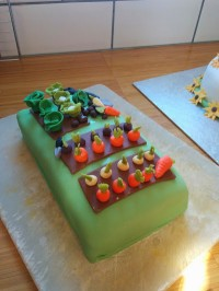 Harvest allotment cake